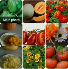 100 Heirloom seeds non-gmo organic vegetable & flower Seeds ~10 different seeds~