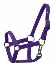 Purple Double Thick Nylon Adjustable Halter w Throat Latch Mini Horse Pony