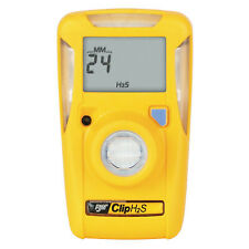 2 YEAR SINGLE GAS DETECTOR H2S 10PPM/15PPM BWC2H  - 1 Each