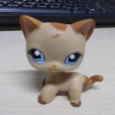 Littlest Pet Shop Collection LPS Loose Toys Brown Shorthair Cat Blue Eyes A