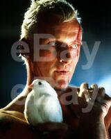 Blade Runner (1982) Rutger Hauer 10x8 Photo