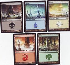 Magic - 1 SET LANDS PROMO ARENA DCI SET 2004 (5 Carte)