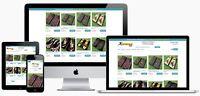 Turnkey SHOPIFY eCommerce DROP SHIP Store Website Business GOOGLE INTEGRATION
