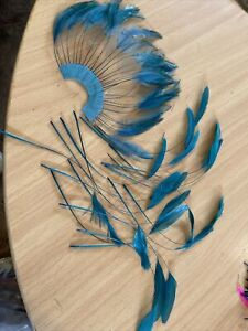 Teal feathers for Hat Making & fascinators & Millinery