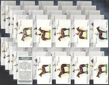 PLAYERS-FULL SET- DERBY & GRAND NATIONAL WINNERS (NOT TRANSFERS 50 CARDS) EXC+++