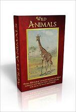Bilderbuch über Tiere in Gebundener Ausgabe