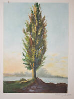 Walther WITTING (1864 Dresden 1940), Baum, Aquarell 1878