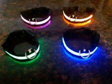Glow in the dark dog collar size small or medium LED dog collar, pink green blue