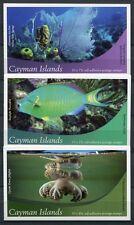 Kaiman-Inseln Cayman 2012 Meerestiere Fische Korallen Fishes Markenhefte (3) MNH