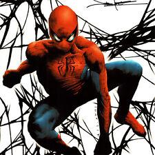 "SPIDER-MAN Signed ART PRINT Jae Lee DARK REIGN Mr. Negative #2 Cover 17x11"" NEW"