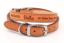Personalisiertes Leder Hundehalsband Welpenhalsband, Feinste Qualität von Ancol