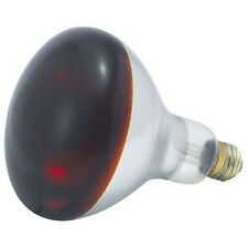 Winco Ehl-Br, 250-Watt Red Bulb for Heat Lamp Ehl-2