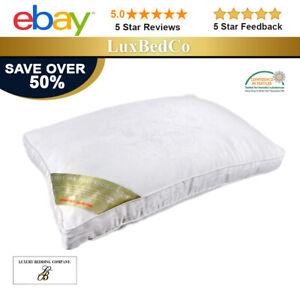 Mulberry Silk Pillows (RRP £200)