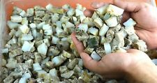 Natural White Opal Gemstone Rough Lot 250-5000 Carat Untreated Australian