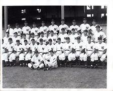 1947 NEW YORK YANKEES Champions ORIGINAL Vintage MLB PRESS PHOTO Baseball Team