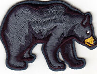 BLACK BEAR Iron On Patch Wild Animals Zoo Forest