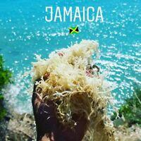 SEA MOSS (CHONDRUS CRISPUS) JAMAICAN 100% IRISH MOSS DR SEBI APPROVED