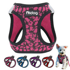 Step In Dog Harness for Small Dogs Reflective Pet Puppy Cat Soft Walking Vest XS