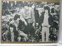 STEPPENWOLF GROUP ROCK VINTAGE POSTER GARAGE 1960's CNG972