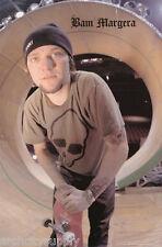 Lot Of 2 Posters : Skateboarding - Bam Margera - Free Ship #3471 Lp41 Q