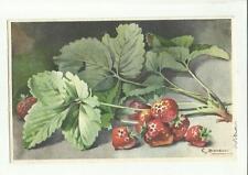 137911 stupenda cartolina artistica frutta di s. bonelli