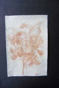 FRENCH SCHOOL 18thC - SUPERB STUDY OF FLOWERS BY TESSIER - RED CHALK DRAWING