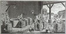 Gravure Antique Print XVIIIe AMYDONNIER Robert Benard
