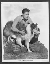 8x10 Press Photo~ THE SON OF LASSIE ~1945 ~Actor Peter Lawford ~Collie dog