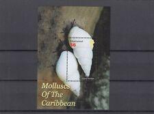 a139 - MONTSERRAT - SGMS1283 MNH 2005 MOLLUSCS OF THE CARIBBEAN