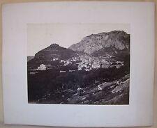 1860circa CAPRI Robert Rive n.233 fotografia animata all'albumina 25x20 cm ulivi
