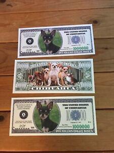 NOVELTY CHIHUAHUA MONEY