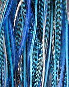 Feathers for Hair Extension 5-7 True Blues & Grizzly Genuine Rooster Feathers fo