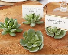 20pcs Succulent Wedding Favor Place Card Holder Holiday Table Bridal Decor