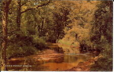 Hampshire: A New Forest Stream - Posted 1974