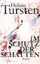 Im Schutz der Schatten von Helene Tursten (2012, Gebunden)