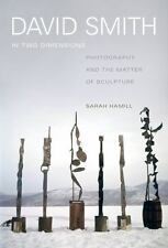 David Smith in Two Dimensions: Photography and the Matter of Sculpture (Hardback