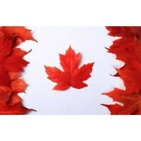 Diamond Painting 5D DIY Full Drill Embroidery Art Cross Stitch Kit Canadian Flag