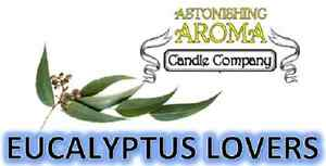EUCALYPTUS LOVERS COLLECTION Soy Wax Clamshell Break Away tart melt candle