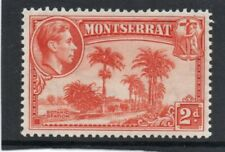 Montserrat GV1 1938-48 2d. orange P13 sg 104 H.Mint