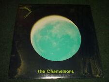 Spring Fallout The Chameleons~NEW~SEALED~1981 Alt Rock New Wave~Portland, Oregon