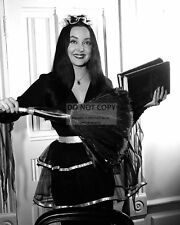 """CAROLYN JONES IN THE TV SHOW """"THE ADDAMS FAMILY"""" - 8X10 PUBLICITY PHOTO (AB931)"""