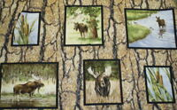 Wild in the Wilderness wildlife moose panel Riverwoods fabric