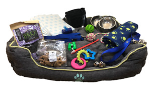 Zuce Puppy Dog Platinum All Inclusive Starter Pack With 30 Inch Plush Indoor Bed