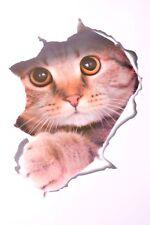1 x 3D Aufkleber Sticker Katze Wandtattoo für Auto WC Kühlschrank Badezimmer Tür