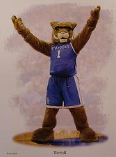 Kentucky Wildcats basketball mascot print by Greg Gamble