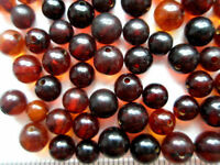 NATURAL BAROQUE POLISHED BALTIC HOLED AMBER LOOSE 50 BEADS 4 - 5 mm
