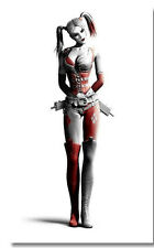 "HARLEY QUINN BATMAN ARKHAM CITY NEW GAME MOVIE POSTER 36x24""  H04"