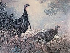 GRANT MACDONALD HAND SIGNED & NUMBERED * WILD TURKEYS * LIMITED EDITION PRINT