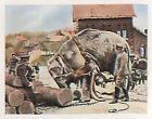 Soldiers working Elephant Deutsches Heer WWI WELTKRIEG 14/18 CHROMO