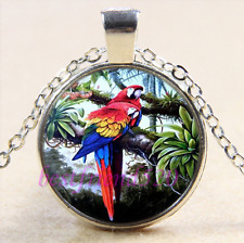 Pretty Parrot Photo Cabochon Glass Tibet Silver Chain Pendant Necklace